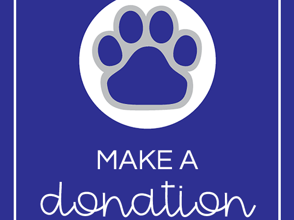 The Tiger Fund Starts Today!